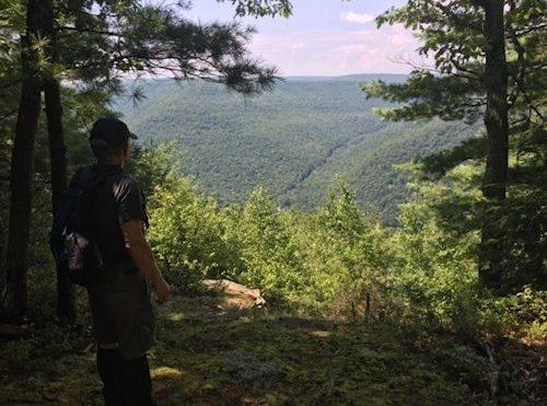 The Tiadaghton Trail